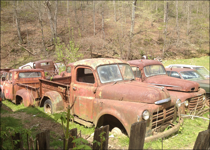 Car Collection Pasture